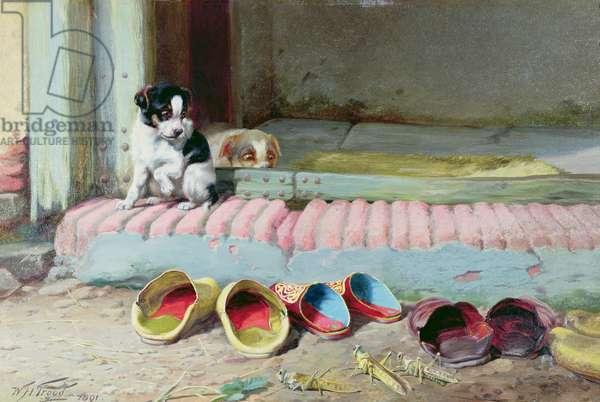 Friend or Foe, 1891