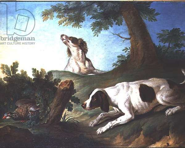 Spaniels putting up a partridge, 1772