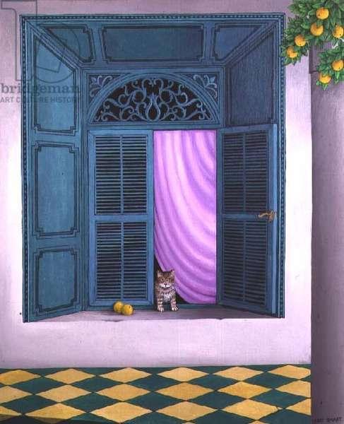 A Cat in the Window, Marrakesh, 1989 (acrylic on linen)