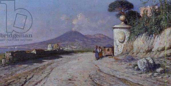 Pompeii: (panel)