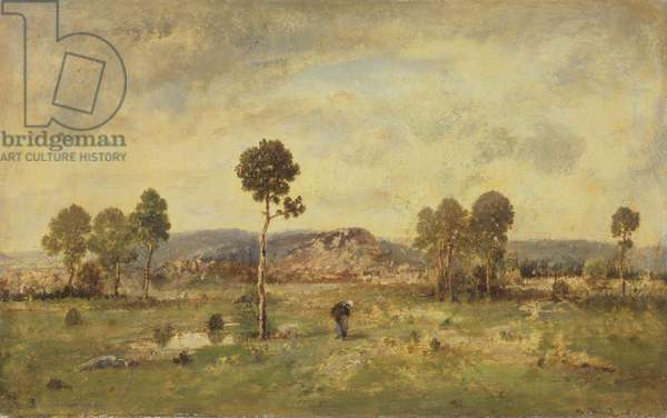 Landscape with a Pine Tree, 1864 (oil on canvas)