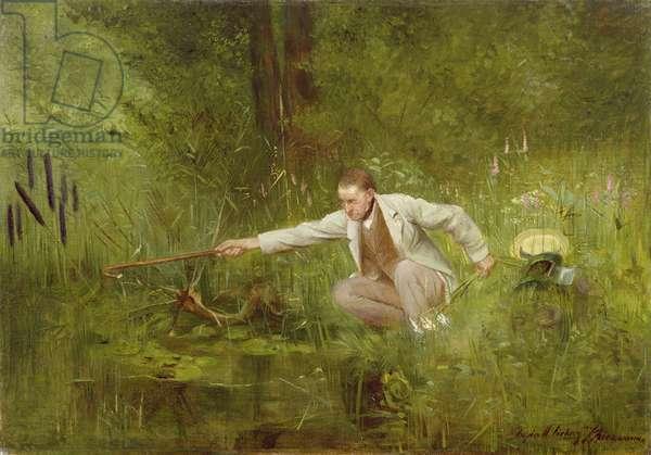 The Botanist (oil on canvas)