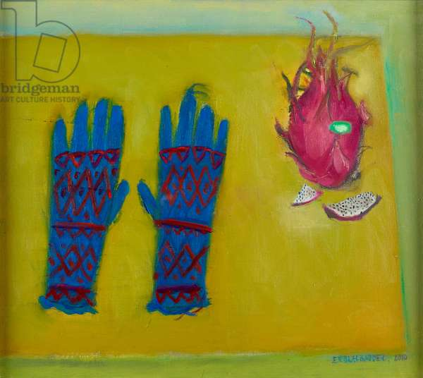 Gloves and dragon fruit, 2010 (oil on canvas)