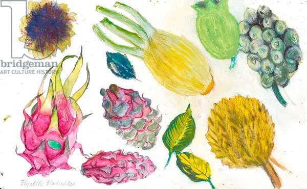 Dragon fruit and fennel (w/c on paper)