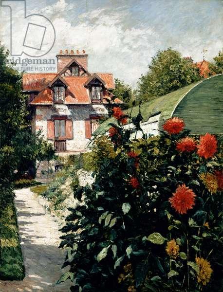 The Dahlias, garden at Petit Gennevilliers, 1893 (oil on canvas)