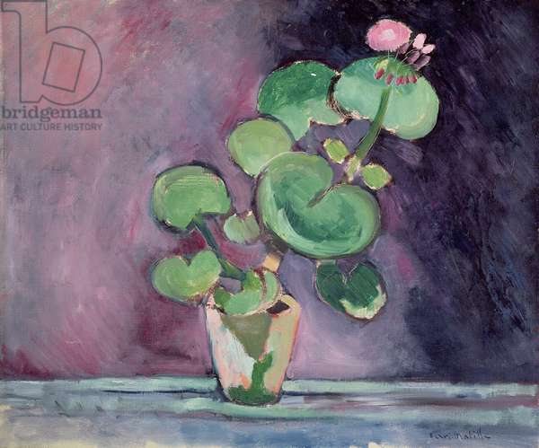 Geranium in a pot (oil on canvas)