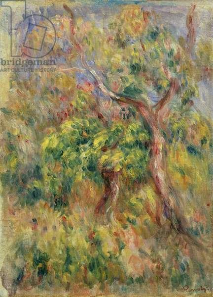 Trees, 1915-16 (oil on canvas)