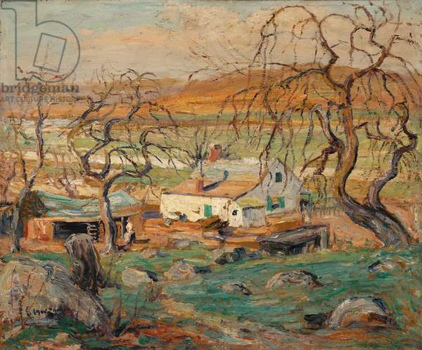 Landscape with Gnarled Trees (oil on cardboard)