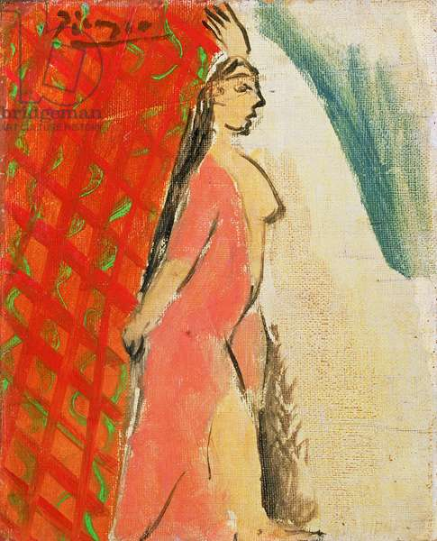Indian-Red Nude in Profile (oil on canvas)