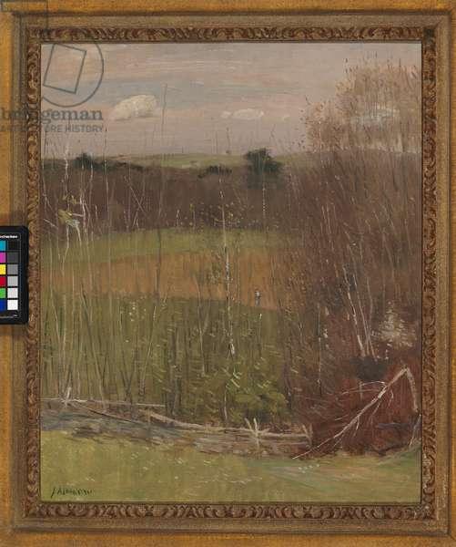 Misty Landscape (oil on canvas)