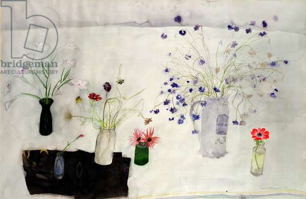 Early Spring Anemone, 1977 (w/c on paper)