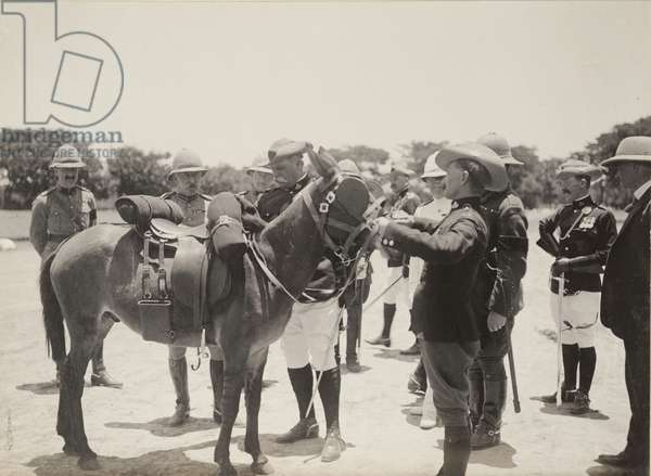 A donkey for the Duke of Connaught, 1910 (b/w photo) [1995/076/1/4/1/70]