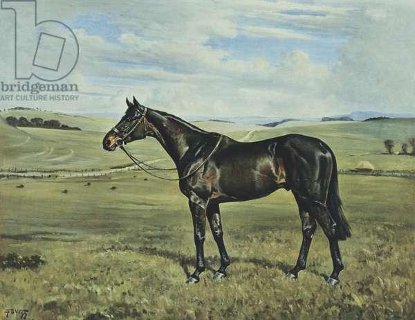 'Drimore Lad', 1936 (coloured litho)