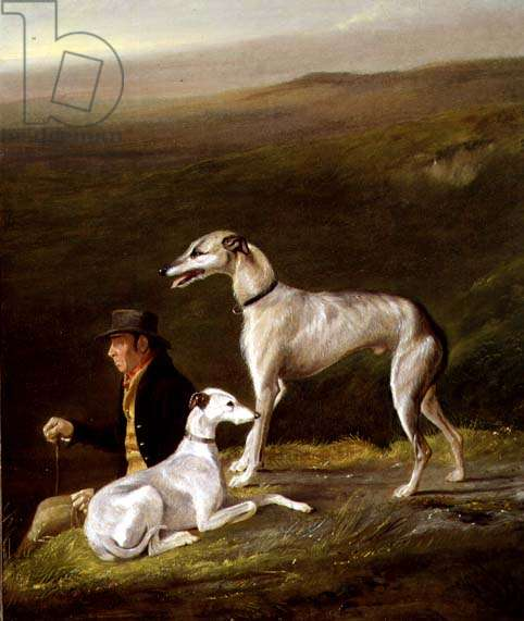 Old Sandy, Trainer to Alexander Graham, with Two Greyhounds in a Highland Landscape (oil on canvas)