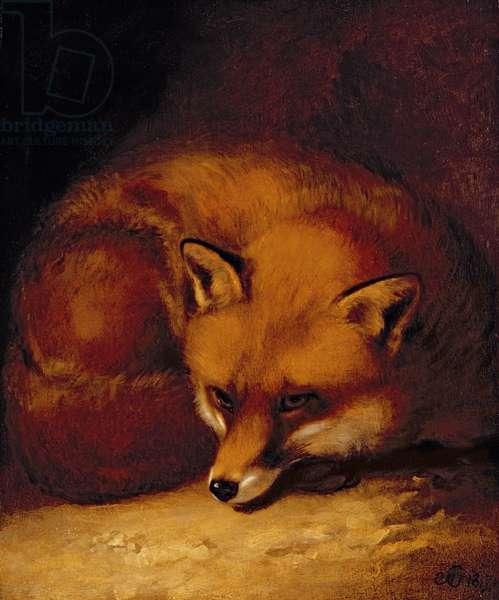 A Fox, 1817 (oil on panel)