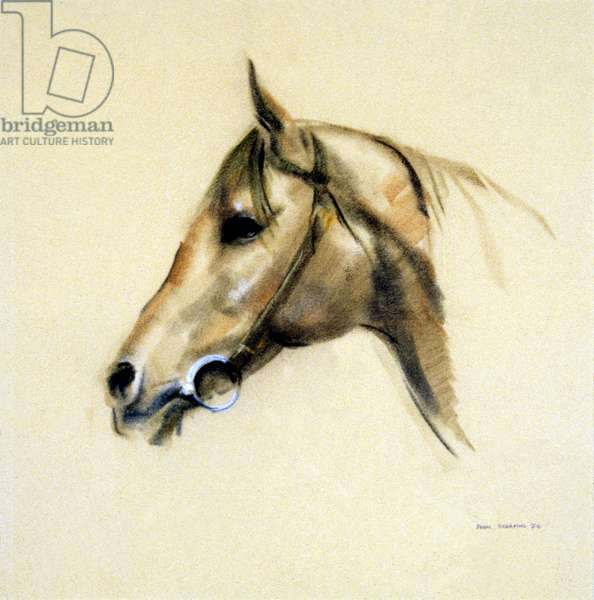 Head of a Horse, 1976 (pastel on paper)
