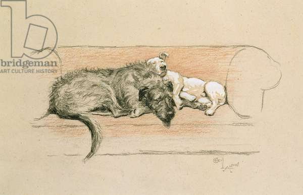 Wolfhound and Bull Terrier Asleep on a Sofa (pastel on paper)
