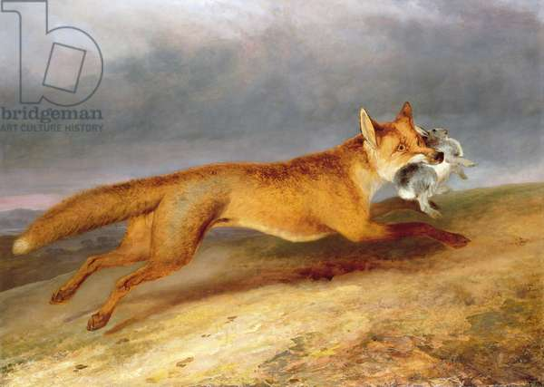 Fox making off with a Rabbit, 1841 (oil on canvas)