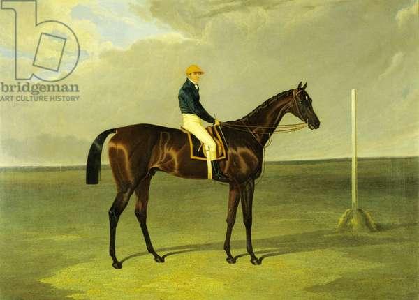 'Sluggard' with Flatman Up, 1832 (oil on canvas)