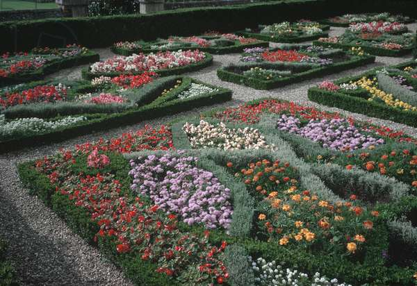 The Knot Garden, Hampton Court Palace (photo)