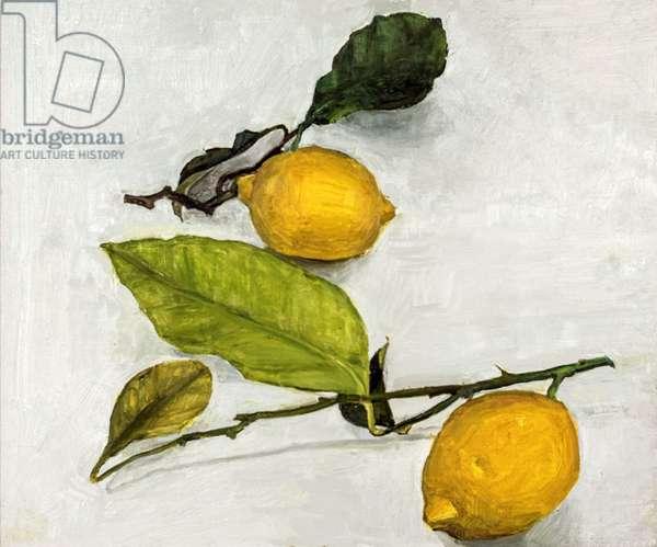Two Lemons, 2017 (oil on panel)