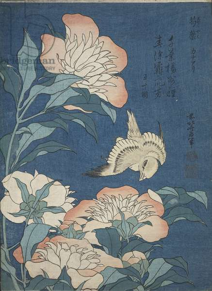 Peonies and Canary (Shakuyaku, kanaari) from an untitled series known as 'Small Flowers', Edo period, c.1834 (woodblock print, ink & colour on paper)