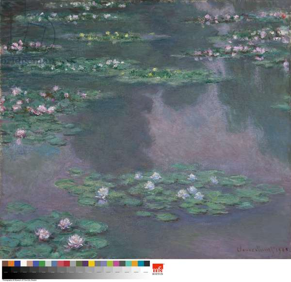 Water Lilies, 1905 (oil on canvas)