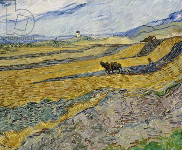 Enclosed Field with Ploughman, October 1889 (oil on canvas)