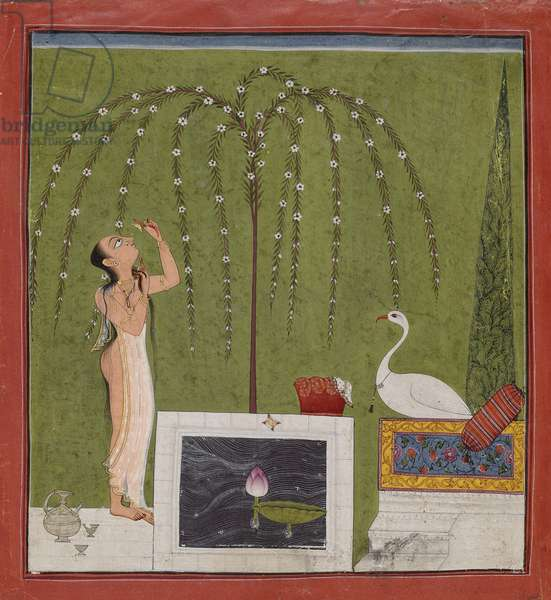 Bathing Woman and a Stork, possibly from Mankot, in the Punjab Hills, c.1725-30 (opaque w/c, gold & silver on paper)