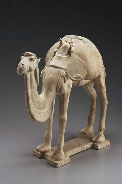 Camel with musical instrument-pipa (earthenware)