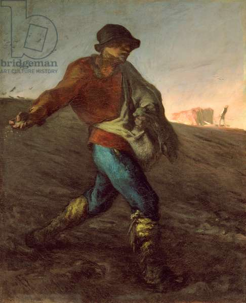 The Sower, 1850 (oil on canvas)
