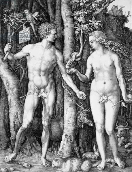 The Fall of Man (Adam and Eve) 1504 (engraving)