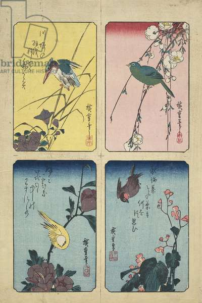 Four Bird-and-Flower Prints, Edo period, c.1832 (woodblock print, ink & colour on paper)
