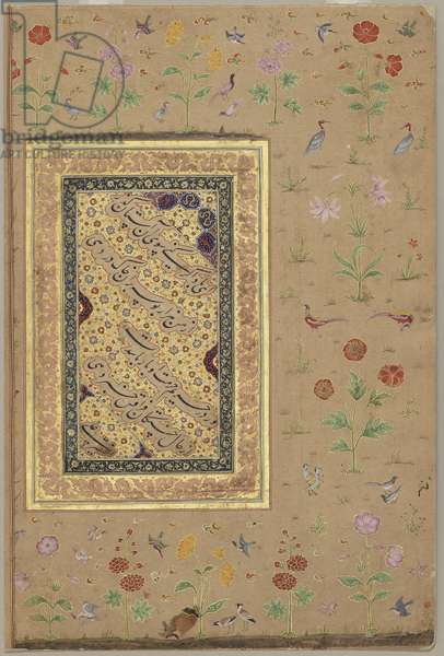 Calligraphy, Mughal, c.1650 (opaque w/c & gold on paper)