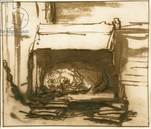Sleeping Watchdog, 1637-40 (pen & ink with wash and opaque white w/c on paper)