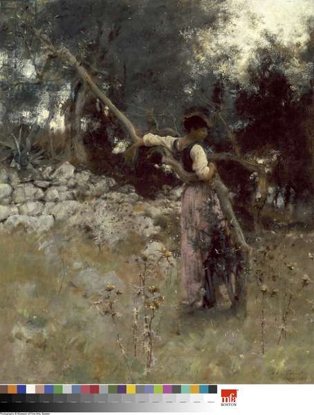 A Capriote, 1878 (oil on canvas)
