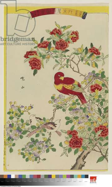 Pomegranate Blossom (Zakurobana) and Crepe Myrtle (Sarusuberi), with Parakeet (Inko) and Baby Birds (Kotori), No. 8 from the series Plants and Trees, Flowers and Birds (Sōmoku kachō zue), 1878 (colour woodblock print)
