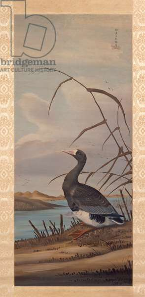 Goose (ink & colour on silk)