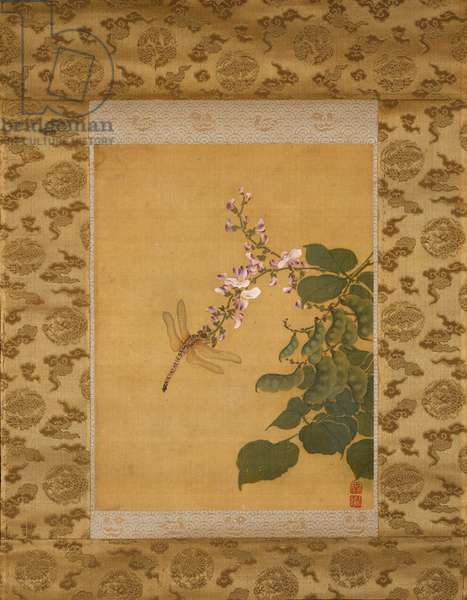Dragon Fly and Blossoming Pea Vine, Qing Dynasty, c.1760 (ink & colours on silk)