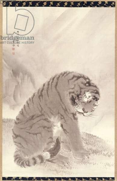 Tiger, 1777 (ink on paper)