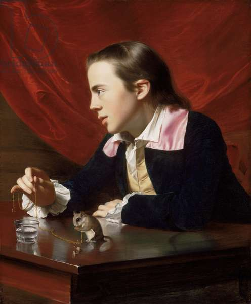 A Boy with a Flying Squirrel, 1765 (oil on canvas)