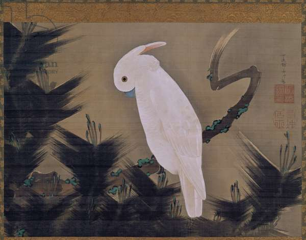 White Cockatoo on a Pine Branch (ink & colour on silk)