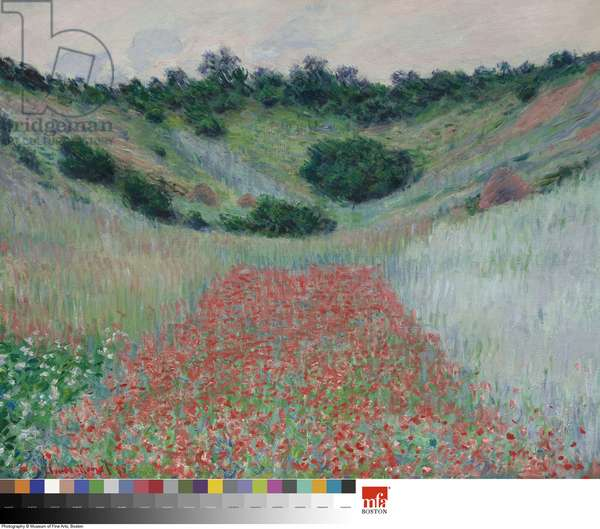 Poppy Field in a Hollow near Giverny, 1885 (oil on canvas)