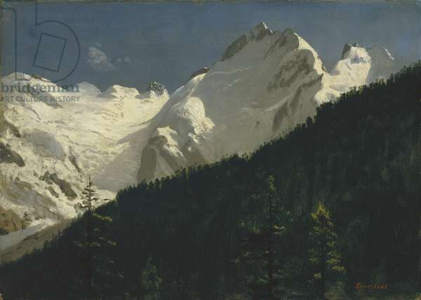 Piz Bernina, Switzerland, c.1880 (oil on paper on masonite)