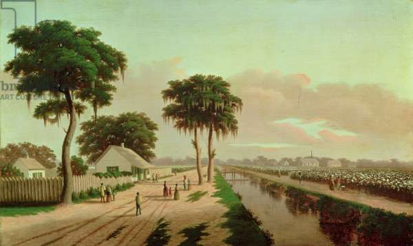 Cotton Plantation, 1850s (oil on canvas)