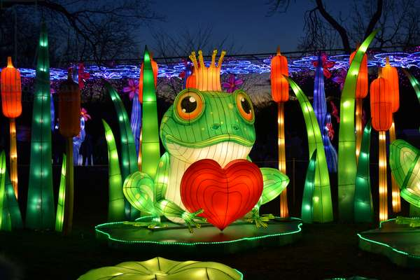 Winter Lantern Festival, Frog and Heart, 2018 (photograph)