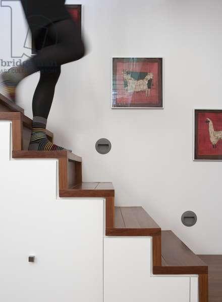 Modern stair, Rue Molson, Montreal, Canada (photo)