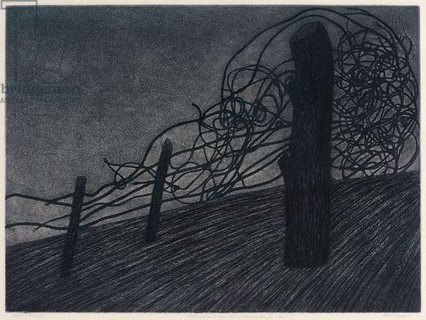 All Around Me Wilderness I See, 1991 (etching)