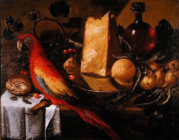 Still life with a parrot (Macaw) (oil on canvas)