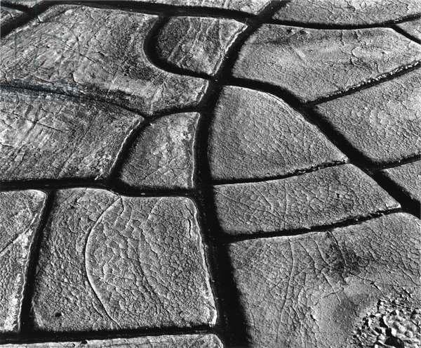 Mud Cracks, 1977 (silver gelatin print)